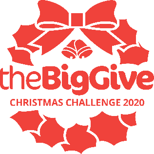 The Big Give 2020